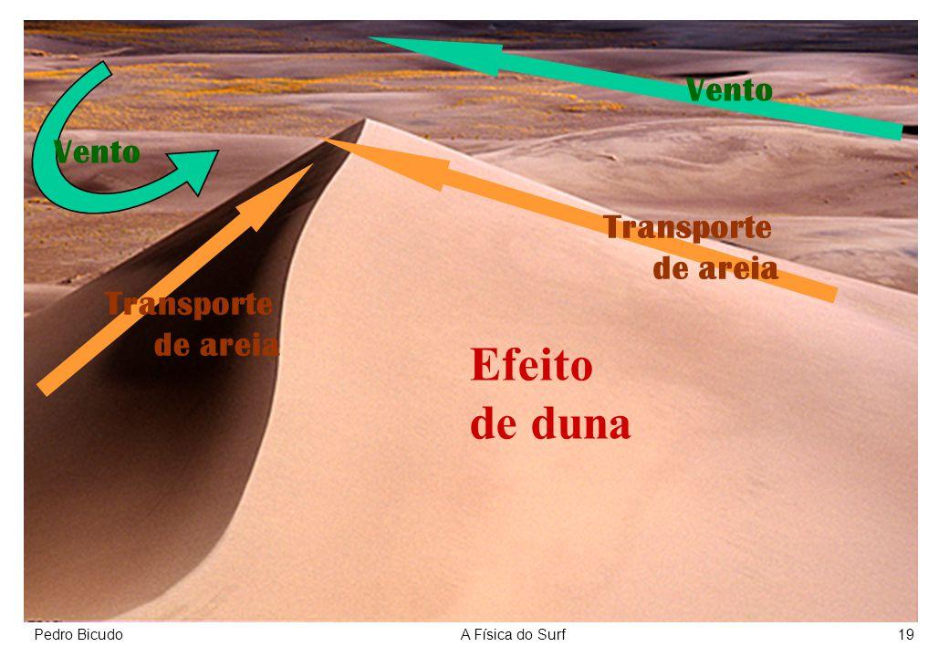 Pedro BicudoA Física do Surf19 Efeito de duna Transporte de areia Vento Transporte de areia