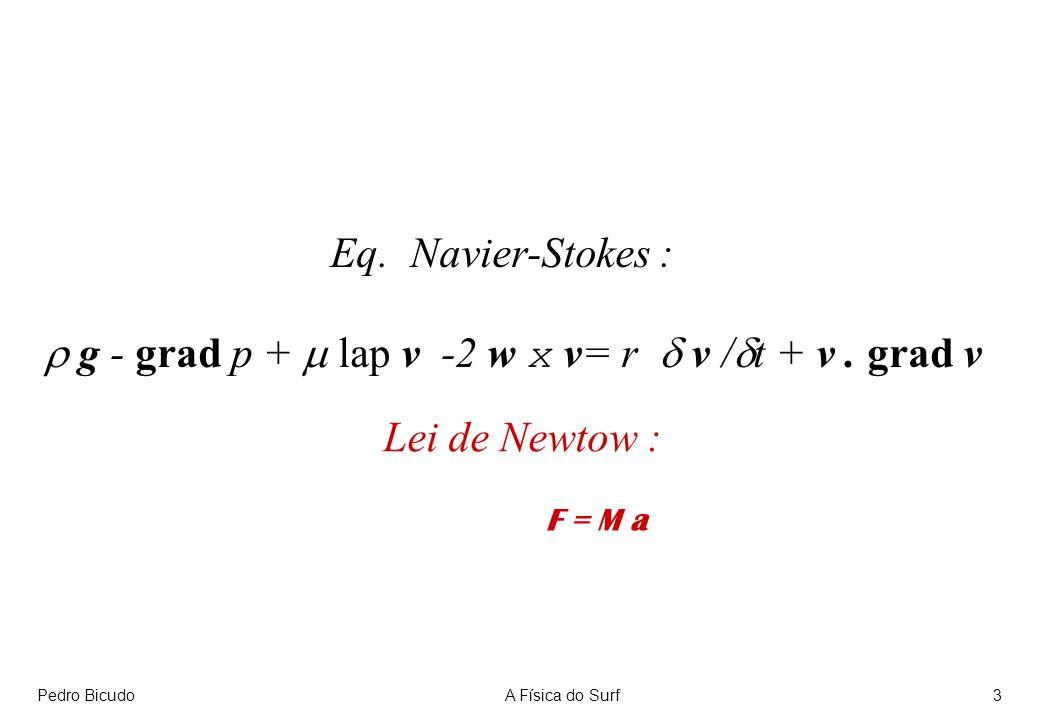 Pedro BicudoA Física do Surf3 Eq.Navier-Stokes : g - grad p + lap v -2 w x v= r v / t + v.