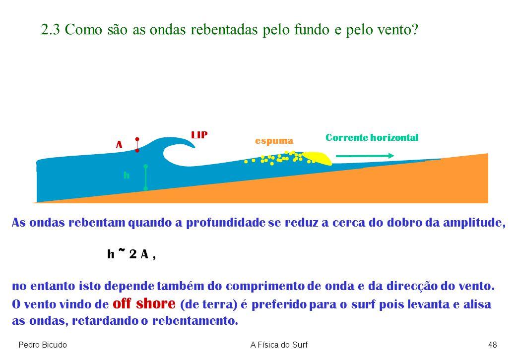 Pedro BicudoA Física do Surf48 2.3 Como são as ondas rebentadas pelo fundo e pelo vento?....................... h A As ondas rebentam quando a profund