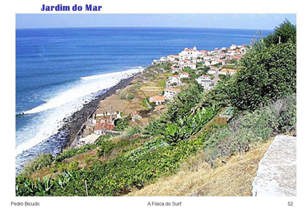 Pedro BicudoA Física do Surf52 Jardim do Mar