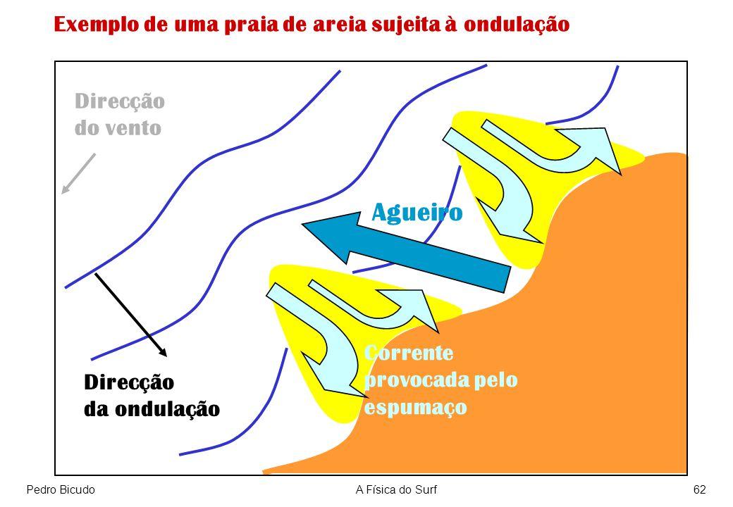 Pedro BicudoA Física do Surf62 Direcção da ondulação Corrente provocada pelo espumaço Agueiro Direcção do vento Exemplo de uma praia de areia sujeita