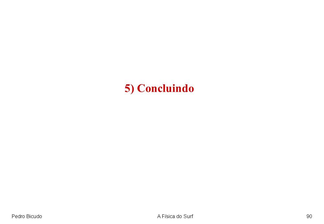 Pedro BicudoA Física do Surf90 5) Concluindo