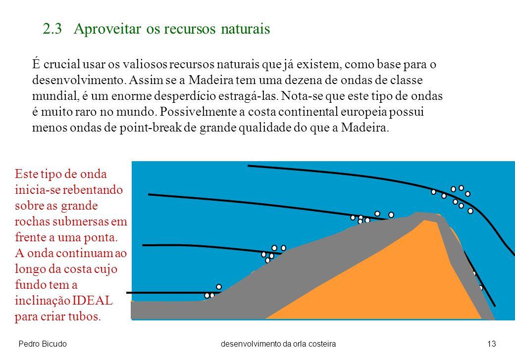 Pedro Bicudodesenvolvimento da orla costeira13 2.3 Aproveitar os recursos naturais É crucial usar os valiosos recursos naturais que já existem, como base para o desenvolvimento.