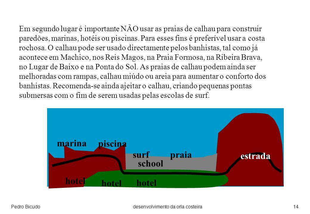 Pedro Bicudodesenvolvimento da orla costeira14 Em segundo lugar é importante NÃO usar as praias de calhau para construir paredões, marinas, hotéis ou piscinas.
