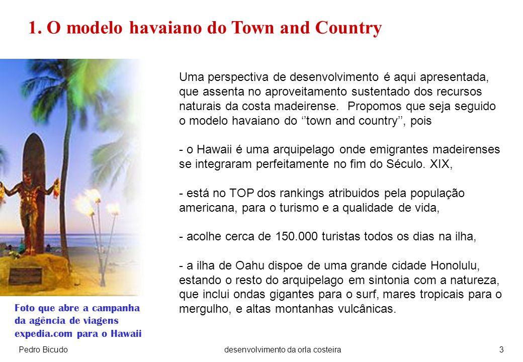 Pedro Bicudodesenvolvimento da orla costeira3 Uma perspectiva de desenvolvimento é aqui apresentada, que assenta no aproveitamento sustentado dos recursos naturais da costa madeirense.