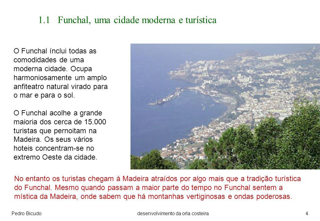 Pedro Bicudodesenvolvimento da orla costeira4 1.1 Funchal, uma cidade moderna e turística O Funchal ínclui todas as comodidades de uma moderna cidade.
