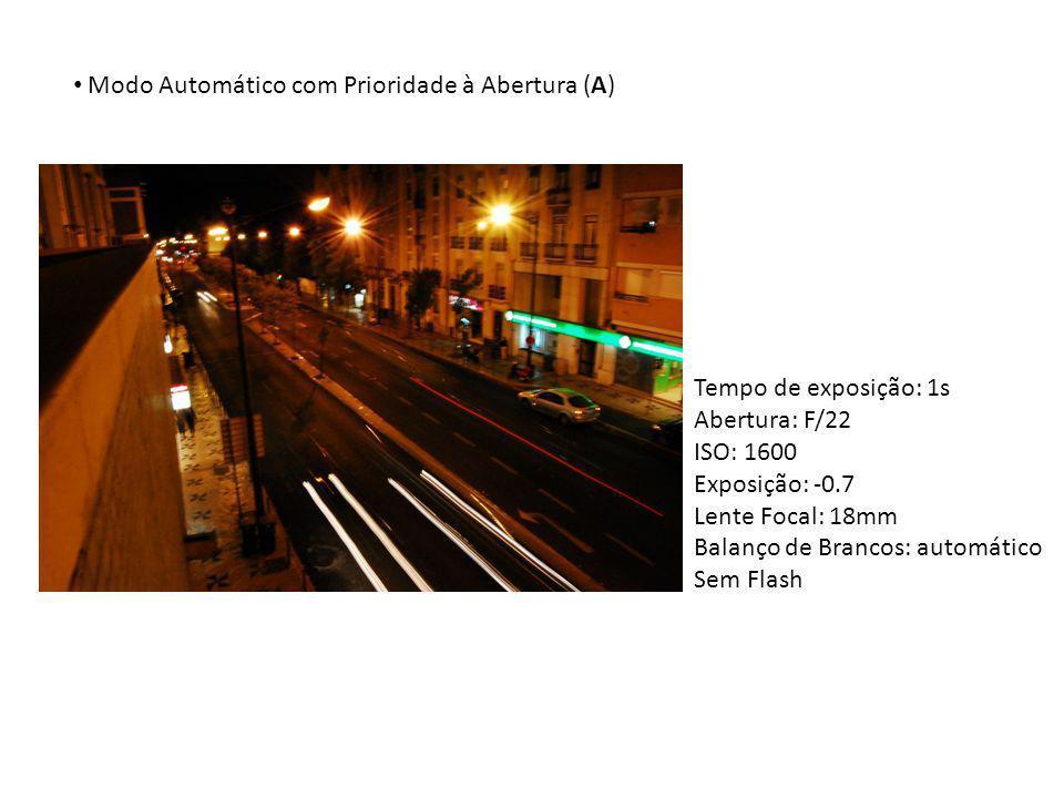 Modo Automático com Prioridade à Abertura (A) Tempo de exposição: 1s Abertura: F/22 ISO: 1600 Exposição: -0.7 Lente Focal: 18mm Balanço de Brancos: au