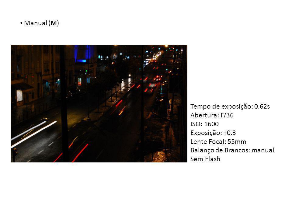 Manual (M) Tempo de exposição: 0.62s Abertura: F/36 ISO: 1600 Exposição: +0.3 Lente Focal: 55mm Balanço de Brancos: manual Sem Flash