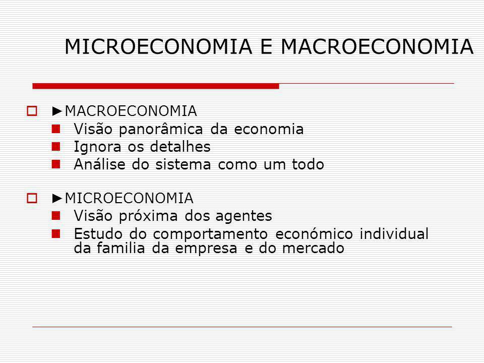 A PROBLEMÁTICA DA MACROECONOMIA Crescimento económico e níveis de vida Produtividade Ciclos económicos Desemprego Inflação Interdependência económica dos países