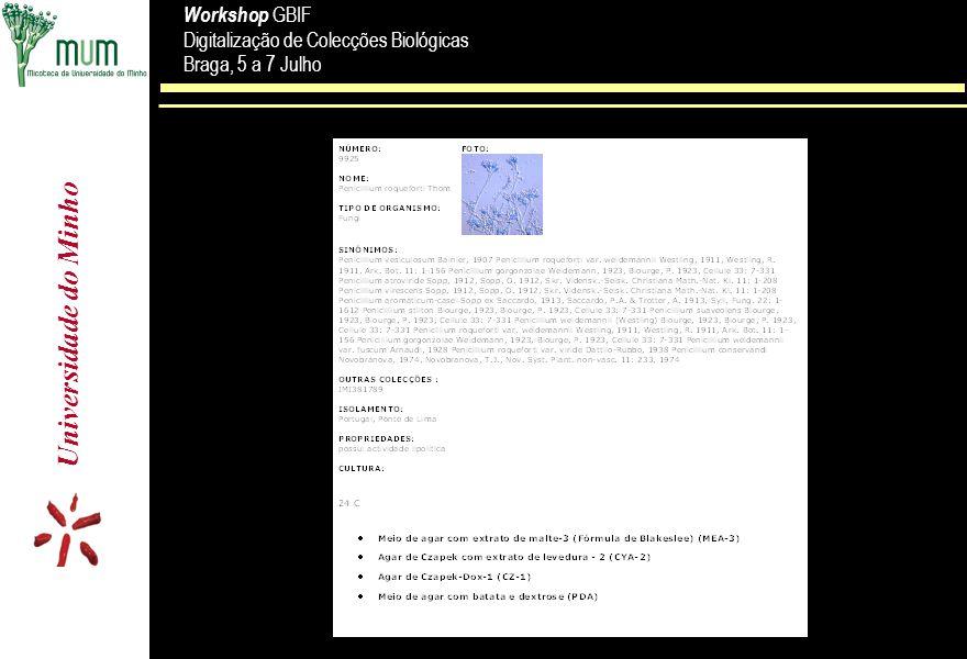 Universidade do Minho Workshop GBIF Digitalização de Colecções Biológicas Braga, 5 a 7 Julho Workshop GBIF Digitalização de Colecções Biológicas Braga, 5 a 7 Julho