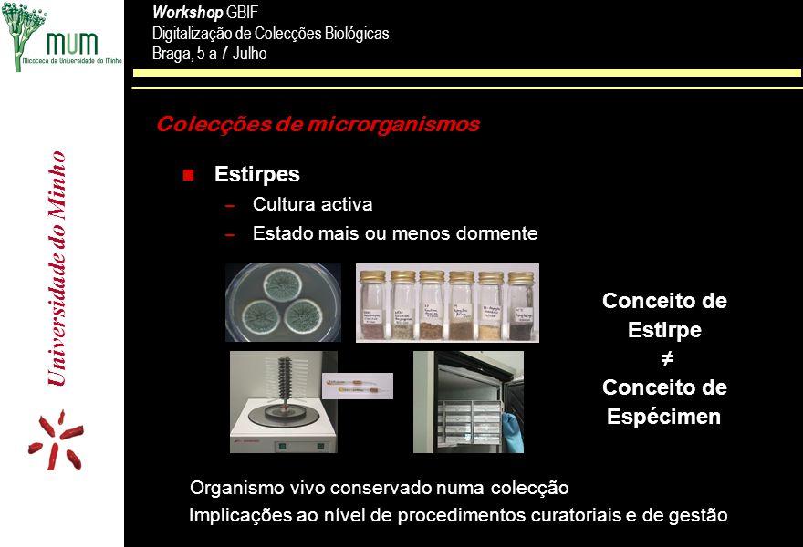 Universidade do Minho Workshop GBIF Digitalização de Colecções Biológicas Braga, 5 a 7 Julho Workshop GBIF Digitalização de Colecções Biológicas Braga, 5 a 7 Julho Formulário de Admissão de Culturas ( Mod.