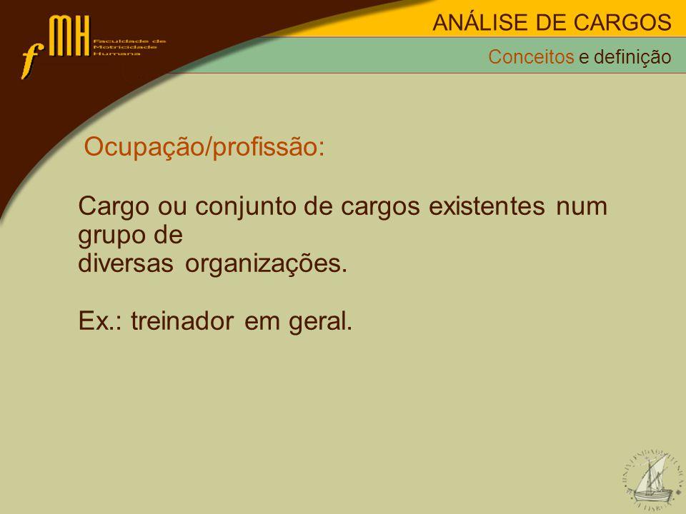 Ocupação/profissão: Cargo ou conjunto de cargos existentes num grupo de diversas organizações. Ex.: treinador em geral. Conceitos e definição ANÁLISE