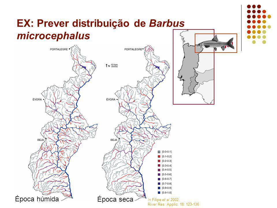EX: Prever distribuição de Barbus microcephalus In Filipe et al 2002, River Res. Applic. 18: 123-136 Época seca Época húmida Portugal