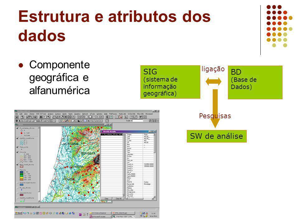 Estrutura e atributos dos dados Componente geográfica e alfanumérica SIG (sistema de informação geográfica) BD (Base de Dados) SW de análise ligação P