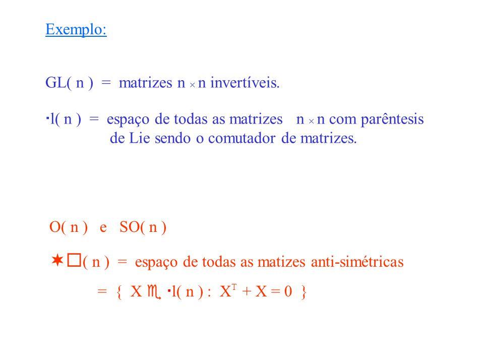 GRUPO DE LIEÁLGEBRA DE LIE G campos vectoriais invariantes à direita em G Global Infinitesimal Substituir condições não lineares de invariância por condições lineares infinitesimais relativamente simples