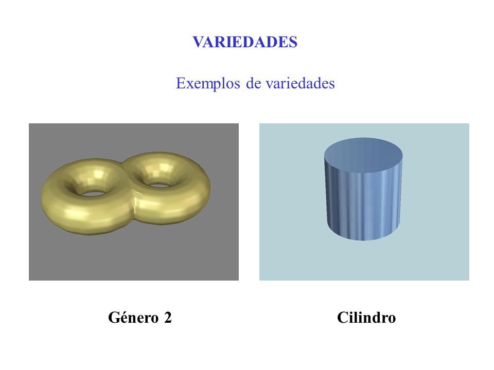 VARIEDADES Exemplos de variedades CilindroGénero 2