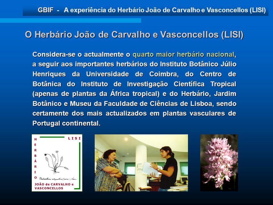 GBIF GBIF - A experiência do Herbário João de Carvalho e Vasconcellos (LISI) Considera-se o actualmente o quarto maior herbário nacional, a seguir aos