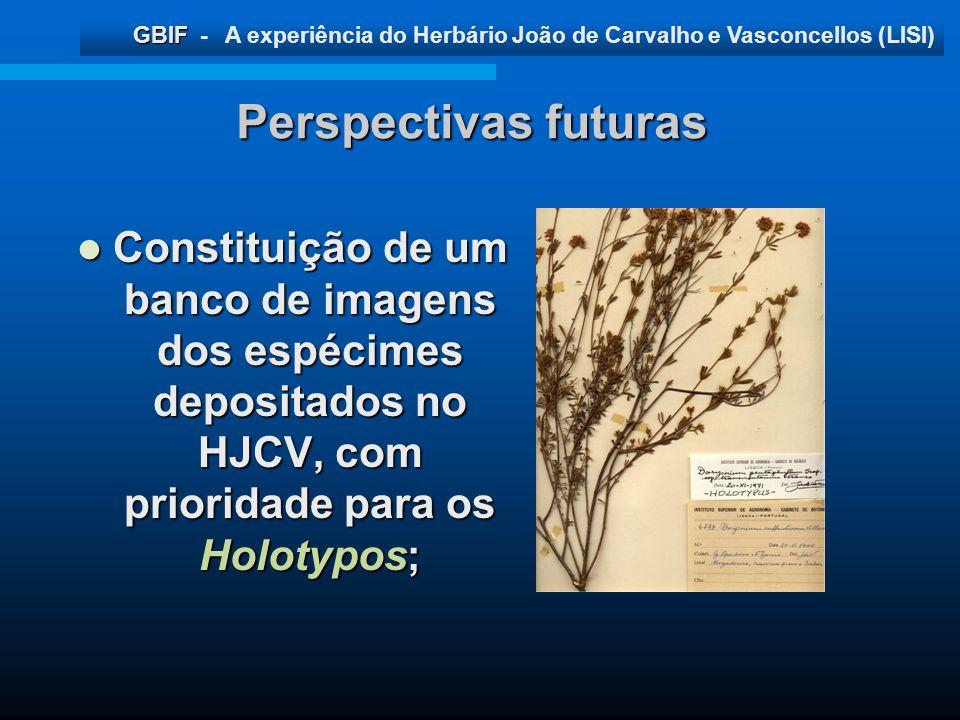GBIF GBIF - A experiência do Herbário João de Carvalho e Vasconcellos (LISI) Perspectivas futuras Constituição de um banco de imagens dos espécimes de