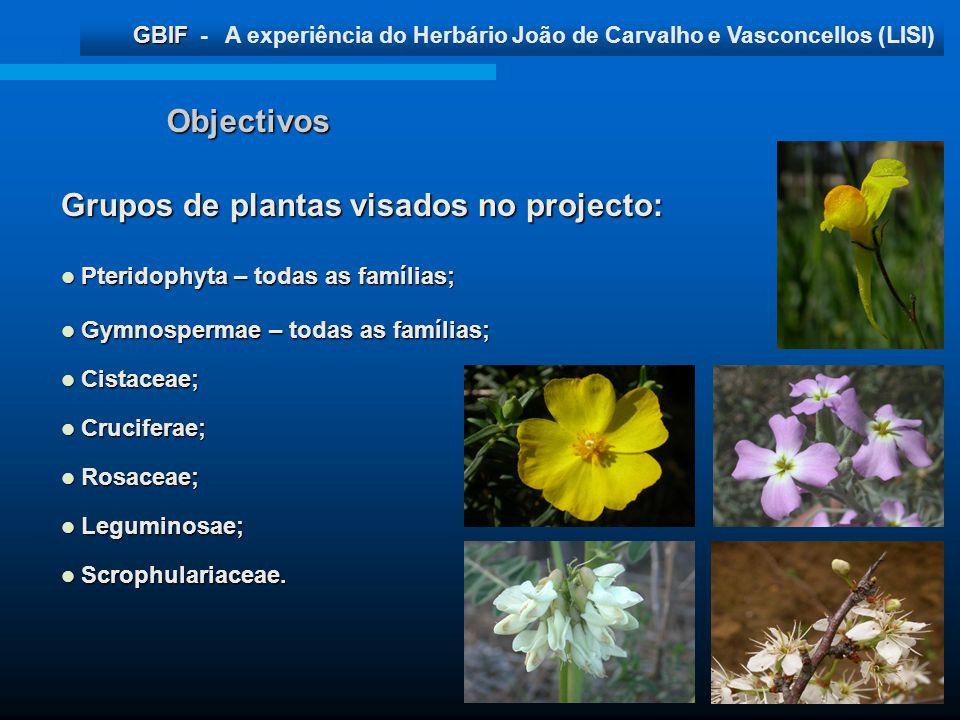 GBIF GBIF - A experiência do Herbário João de Carvalho e Vasconcellos (LISI) Objectivos Grupos de plantas visados no projecto: Pteridophyta – todas as