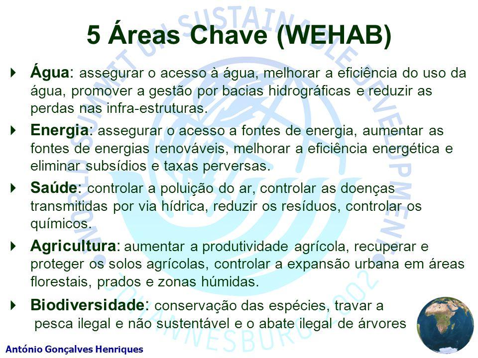 António Gonçalves Henriques 5 Áreas Chave (WEHAB) Água: assegurar o acesso à água, melhorar a eficiência do uso da água, promover a gestão por bacias