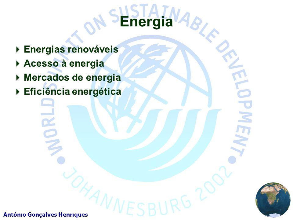 António Gonçalves Henriques Energia Energias renováveis Acesso à energia Mercados de energia Eficiência energética