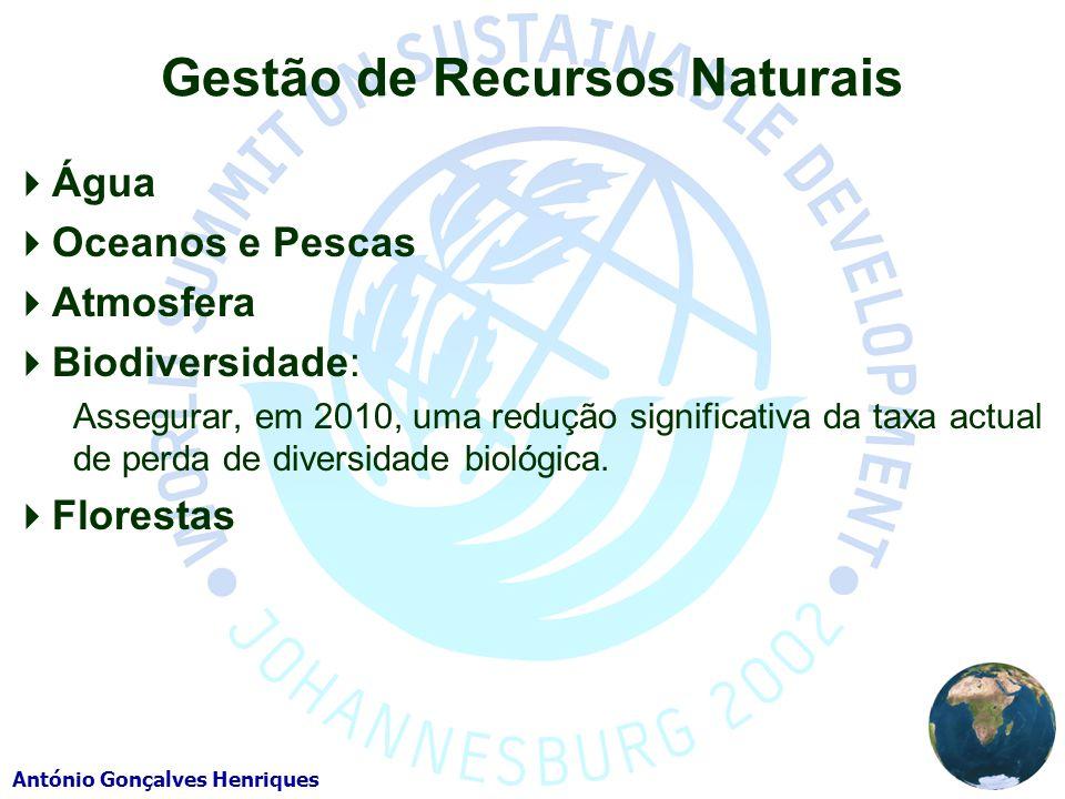 António Gonçalves Henriques Gestão de Recursos Naturais Água Oceanos e Pescas Atmosfera Biodiversidade: Assegurar, em 2010, uma redução significativa da taxa actual de perda de diversidade biológica.