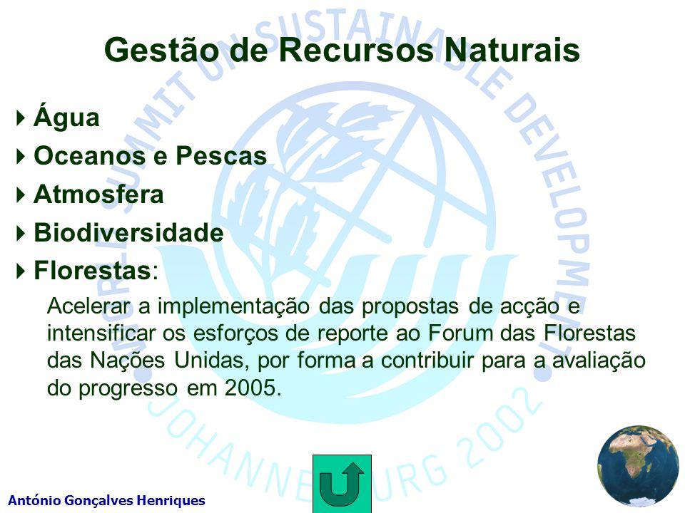 António Gonçalves Henriques Gestão de Recursos Naturais Água Oceanos e Pescas Atmosfera Biodiversidade Florestas: Acelerar a implementação das propostas de acção e intensificar os esforços de reporte ao Forum das Florestas das Nações Unidas, por forma a contribuir para a avaliação do progresso em 2005.