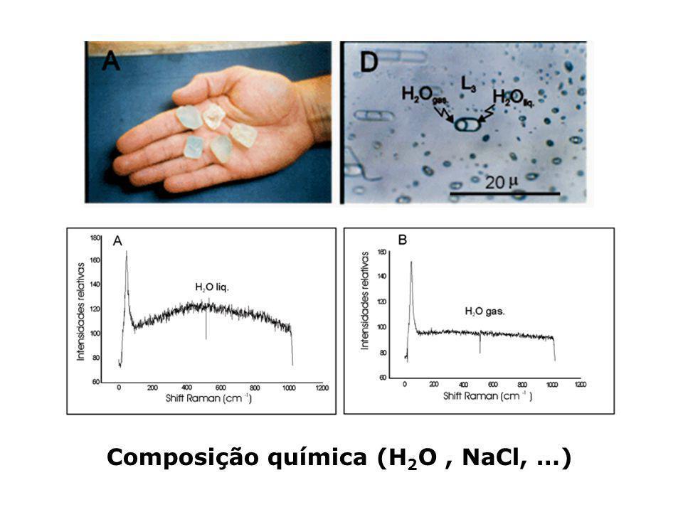 Composição química (H 2 O, NaCl, …)