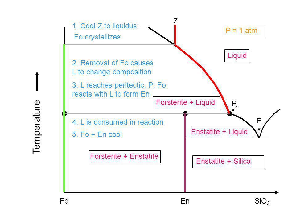Fo Liquid EnSiO 2 Forsterite + Enstatite Enstatite + Silica Enstatite + Liquid Forsterite + Liquid Temperature P = 1 atm 1. Cool Z to liquidus; 2. Rem