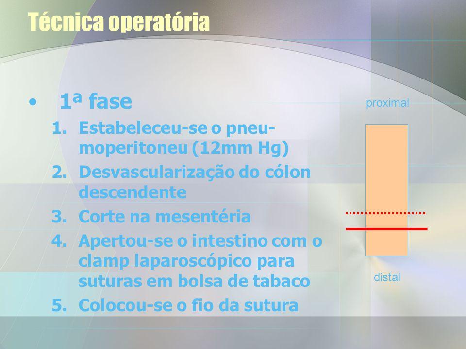 Técnica operatória Operatório –Os animais foram anestesiados e entubados Podemos dividir a operação em 2 fases –1ª fase – remoção do segmento intestin