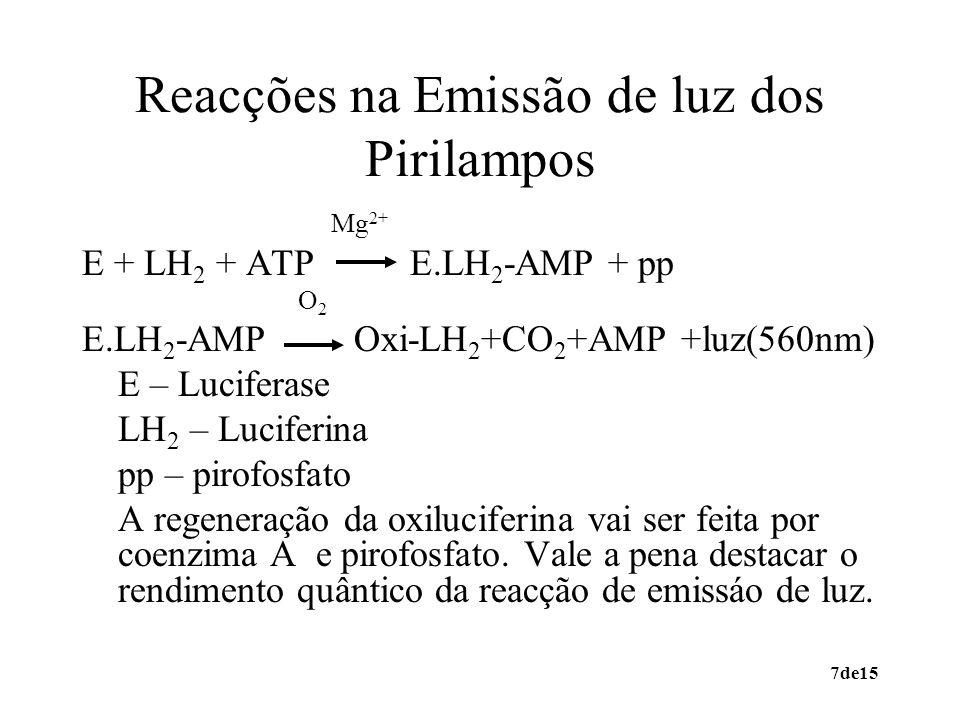7de15 Reacções na Emissão de luz dos Pirilampos Mg 2+ E + LH 2 + ATP E.LH 2 -AMP + pp O 2 E.LH 2 -AMP Oxi-LH 2 +CO 2 +AMP +luz(560nm) E – Luciferase L