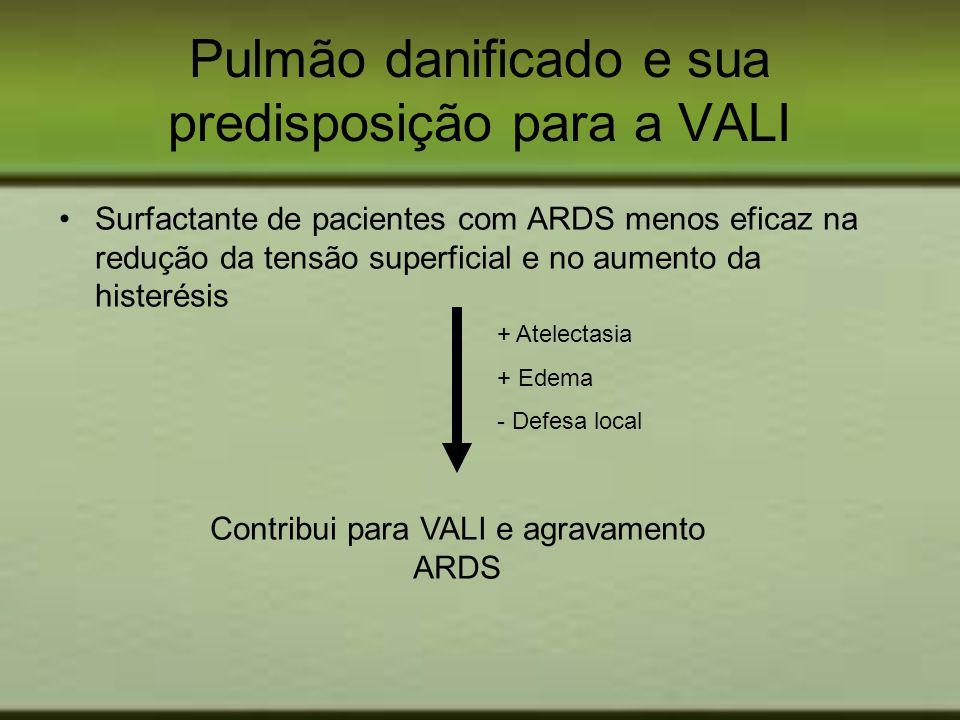 Pulmão danificado e sua predisposição para a VALI Surfactante de pacientes com ARDS menos eficaz na redução da tensão superficial e no aumento da hist