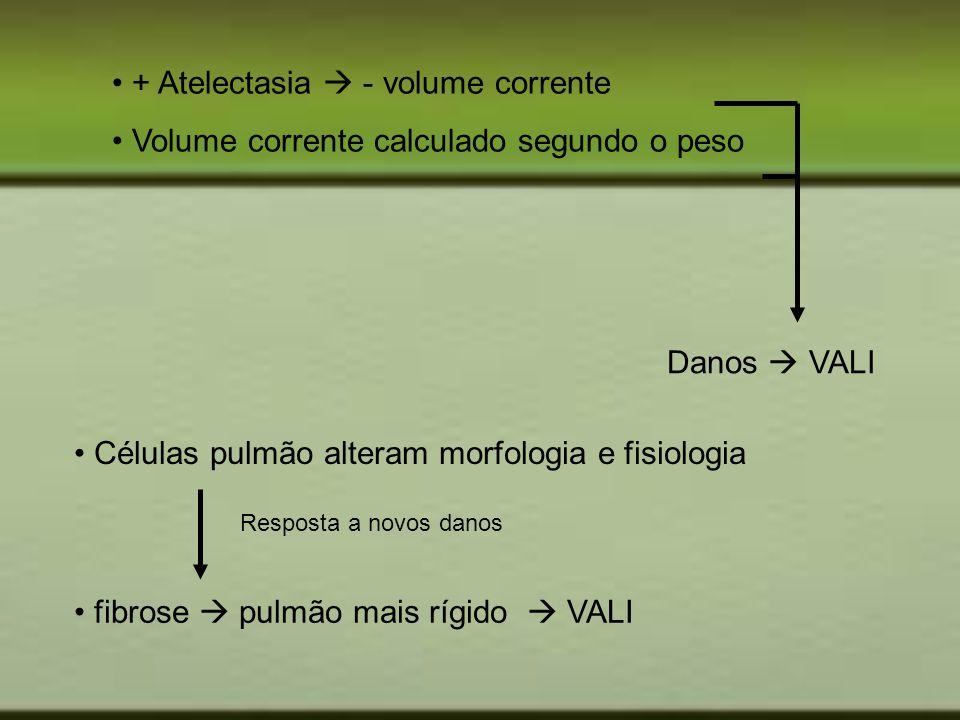 + Atelectasia - volume corrente Volume corrente calculado segundo o peso Danos VALI Células pulmão alteram morfologia e fisiologia fibrose pulmão mais