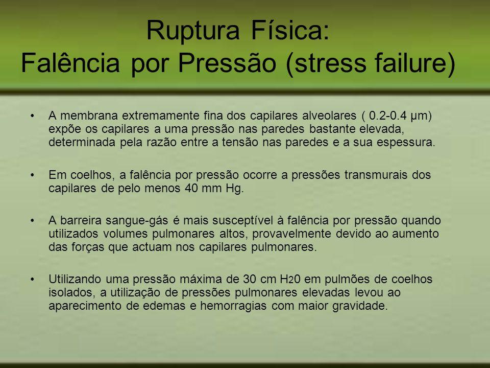 Ruptura Física: Falência por Pressão (stress failure) A membrana extremamente fina dos capilares alveolares ( 0.2-0.4 µm) expõe os capilares a uma pre