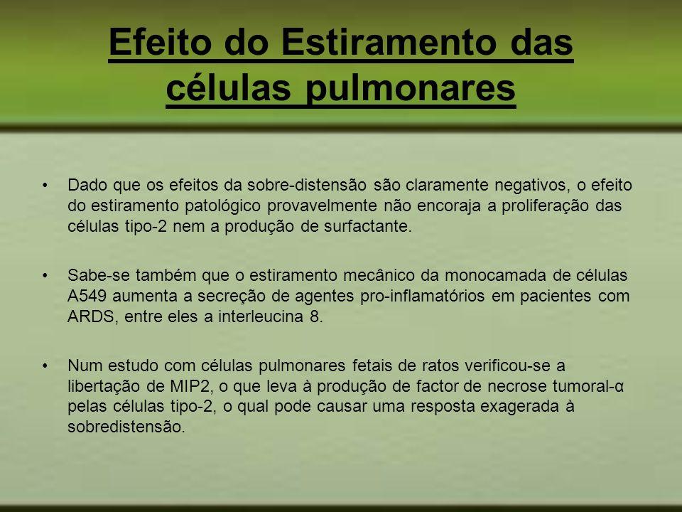 Efeito do Estiramento das células pulmonares Dado que os efeitos da sobre-distensão são claramente negativos, o efeito do estiramento patológico prova