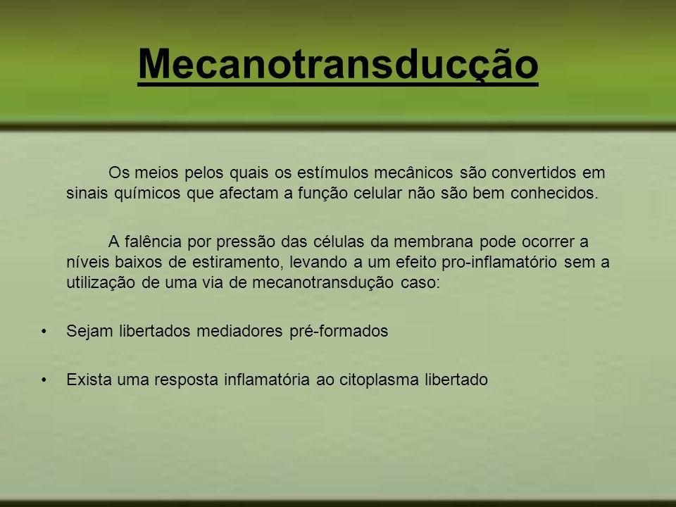 Mecanotransducção Os meios pelos quais os estímulos mecânicos são convertidos em sinais químicos que afectam a função celular não são bem conhecidos.