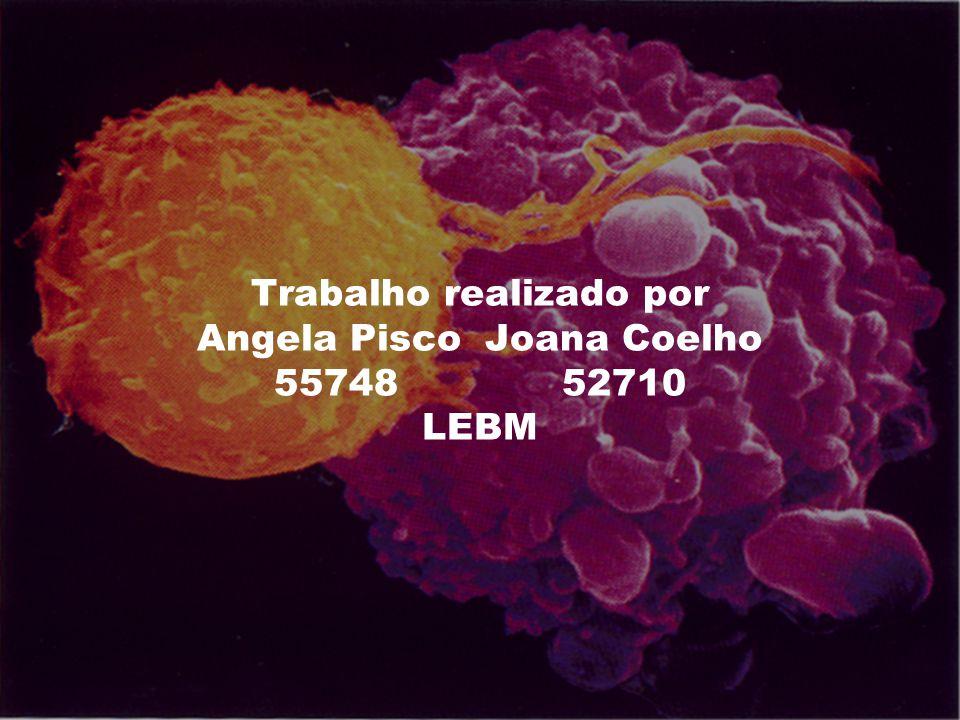 Trabalho realizado por Angela PiscoJoana Coelho 5574852710 LEBM