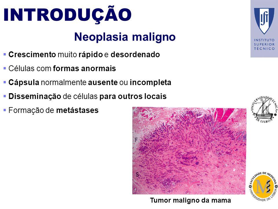 INTRODUÇÃO Neoplasia maligno Crescimento muito rápido e desordenado Células com formas anormais Cápsula normalmente ausente ou incompleta Disseminação de células para outros locais Formação de metástases Tumor maligno da mama