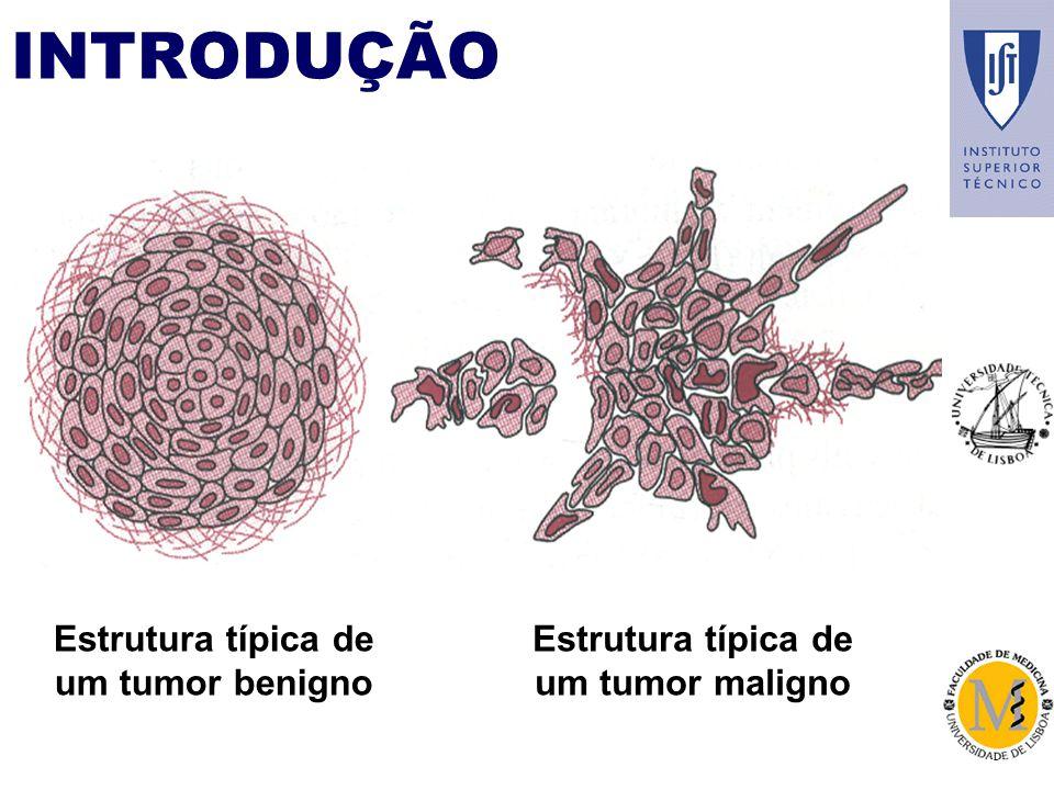 INTRODUÇÃO Estrutura típica de um tumor benigno Estrutura típica de um tumor maligno