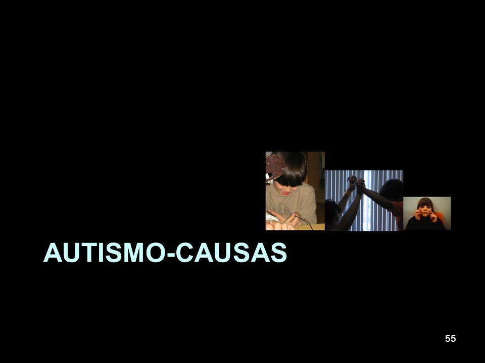 AUTISMO-CAUSAS 55