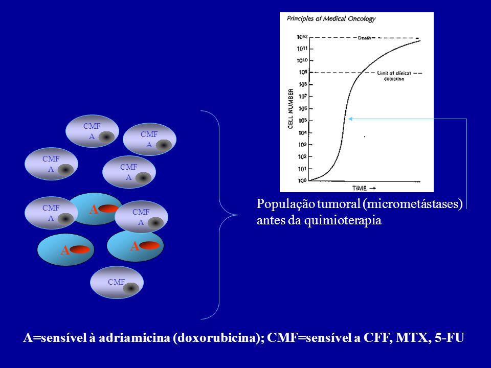 CMF A AAA CMF A CMF A CMF A CMF A CMF A População tumoral (micrometástases) antes da quimioterapia A=sensível à adriamicina (doxorubicina); CMF=sensív
