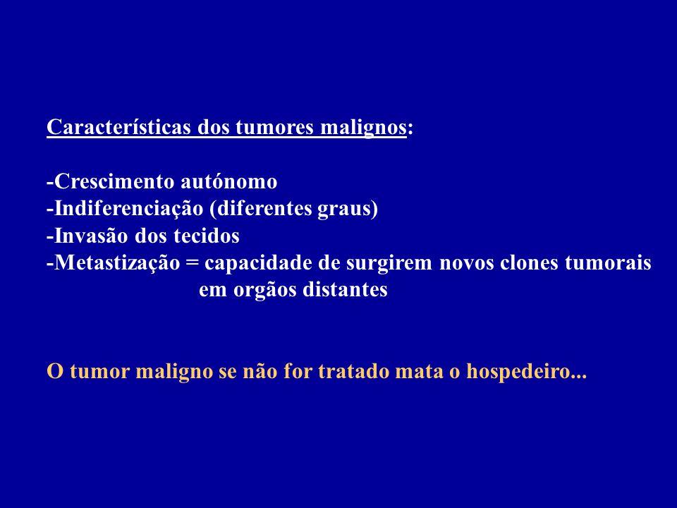 Características dos tumores malignos: -Crescimento autónomo -Indiferenciação (diferentes graus) -Invasão dos tecidos -Metastização = capacidade de sur