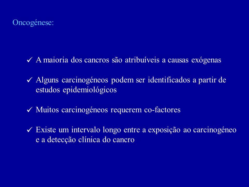Oncogénese: A maioria dos cancros são atribuíveis a causas exógenas Alguns carcinogéneos podem ser identificados a partir de estudos epidemiológicos M