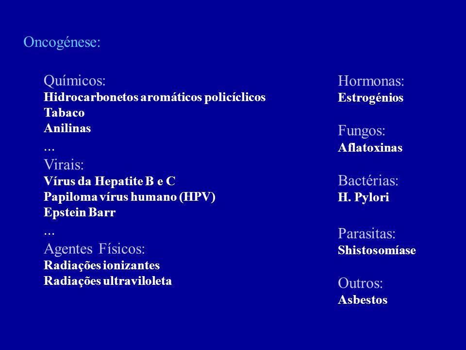 Oncogénese: Químicos: Hidrocarbonetos aromáticos policíclicos Tabaco Anilinas... Virais: Vírus da Hepatite B e C Papiloma vírus humano (HPV) Epstein B
