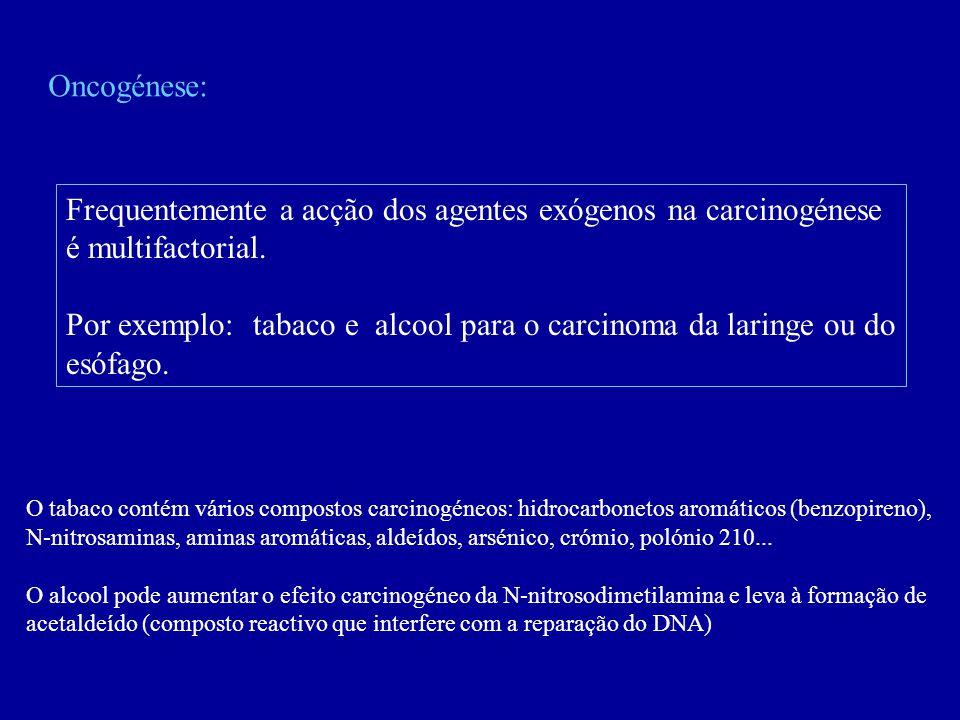 Oncogénese: Frequentemente a acção dos agentes exógenos na carcinogénese é multifactorial. Por exemplo: tabaco e alcool para o carcinoma da laringe ou