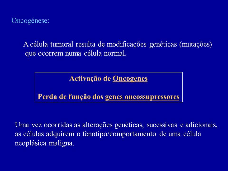 Oncogénese: A célula tumoral resulta de modificações genéticas (mutações) que ocorrem numa célula normal. Activação de Oncogenes Perda de função dos g