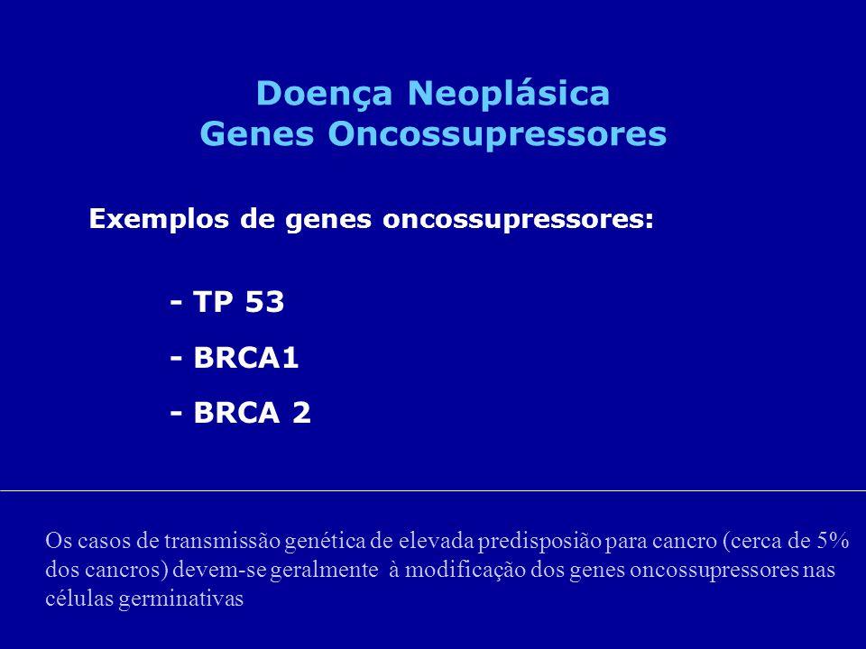 Exemplos de genes oncossupressores: - TP 53 - BRCA1 - BRCA 2 Doença Neoplásica Genes Oncossupressores Os casos de transmissão genética de elevada pred