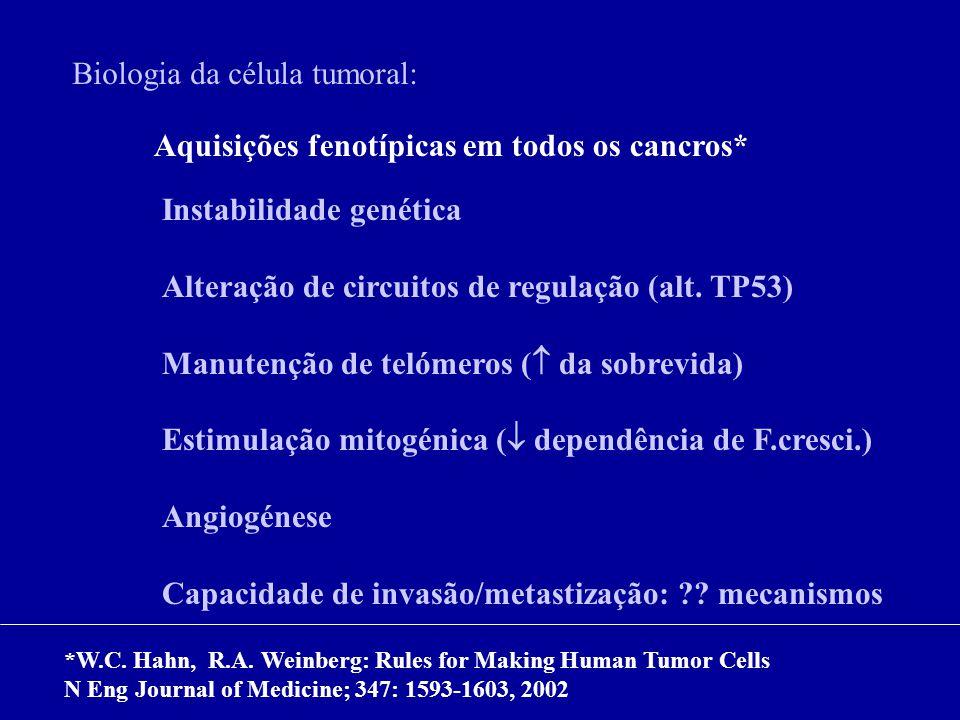 Biologia da célula tumoral: Aquisições fenotípicas em todos os cancros* Instabilidade genética Alteração de circuitos de regulação (alt. TP53) Manuten