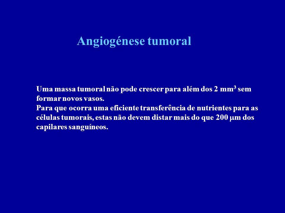 Angiogénese tumoral Uma massa tumoral não pode crescer para além dos 2 mm 3 sem formar novos vasos. Para que ocorra uma eficiente transferência de nut