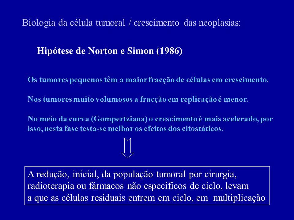 Biologia da célula tumoral / crescimento das neoplasias: Hipótese de Norton e Simon (1986) Os tumores pequenos têm a maior fracção de células em cresc